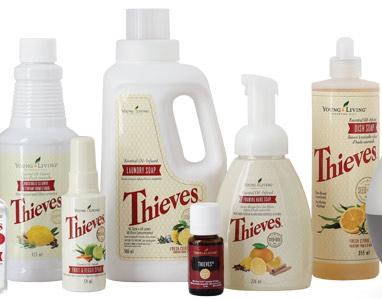 Universalreiniger Haushaltsreiniger Gerschirrspülmittel Waschmittel Ökologisch Natürlich